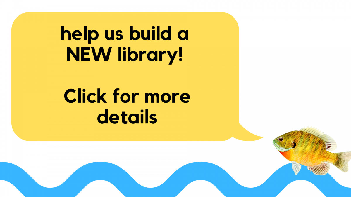 Link to the Library's GoFundMe Page to fund a new library and community center
